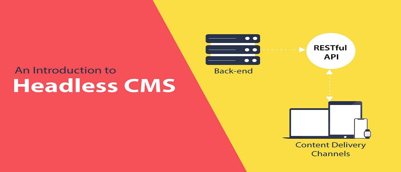 Headless Wordpress CMS